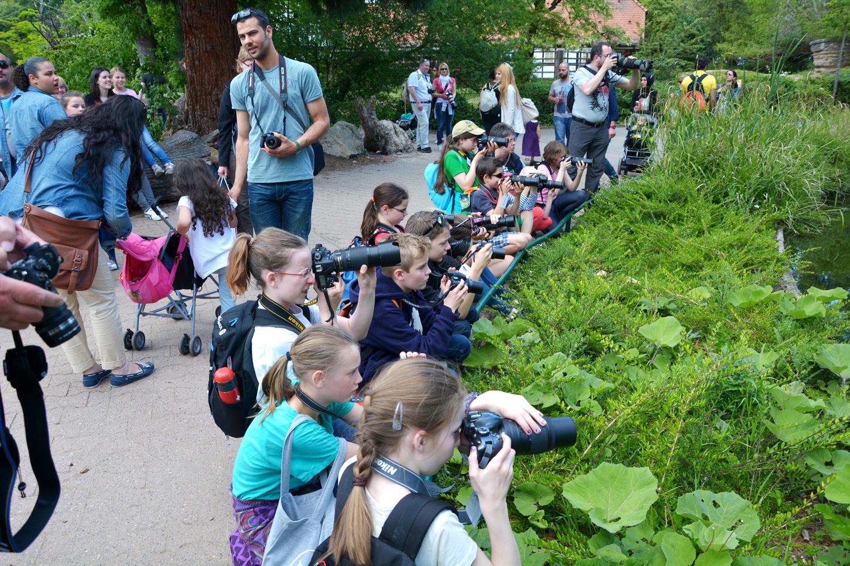Фотокурс для детей в зоопарке Франкфурта